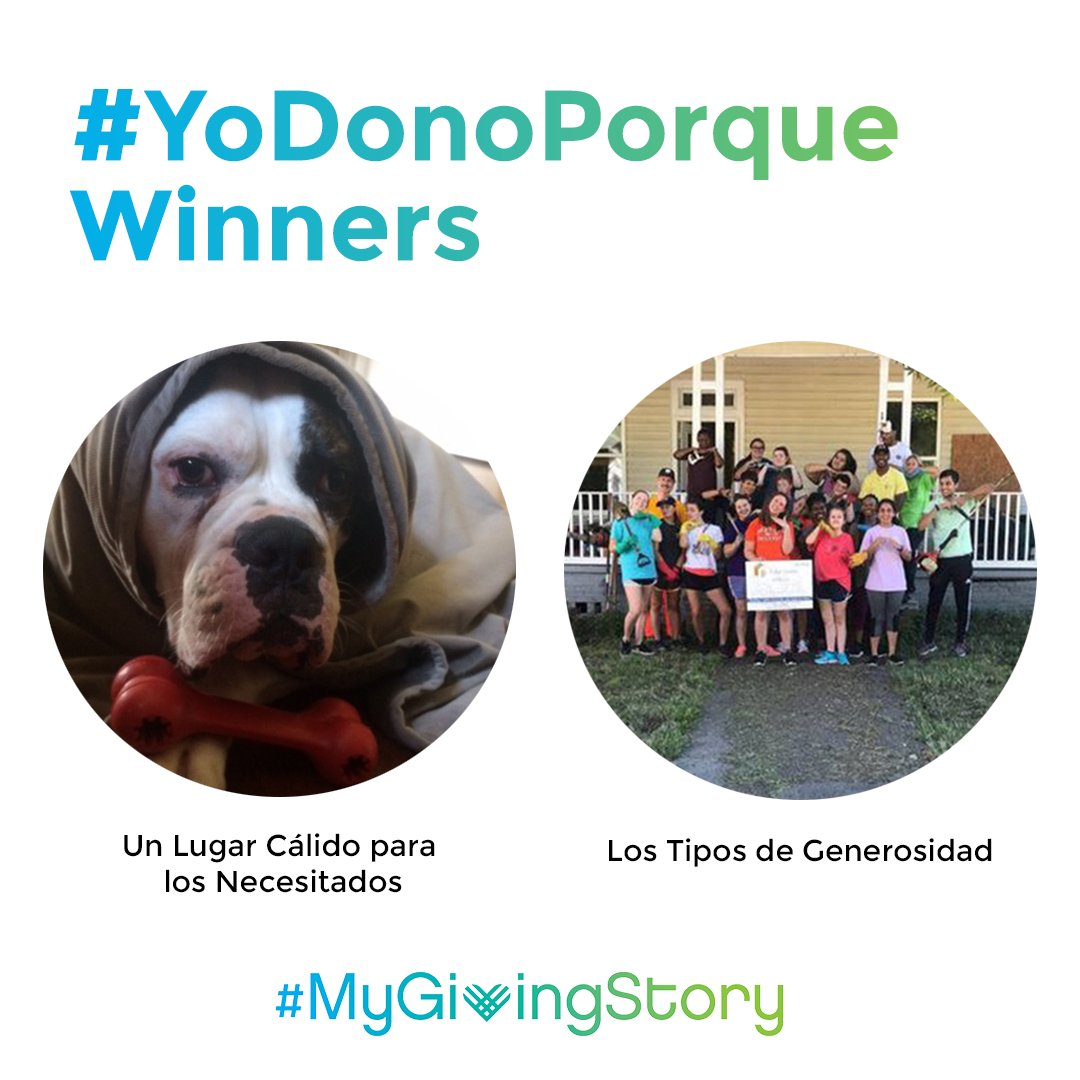Instagram style image that shows #YoDonoPorque winning stories, including a dog in a blanket and a group of people volunteering, with a #MyGivingStory logo below.